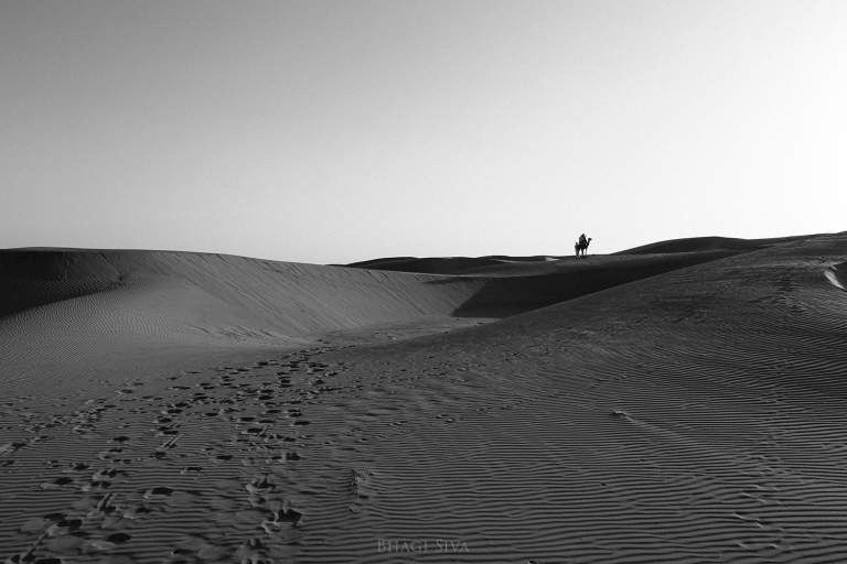 jaisalmer, jaisalmer camel, jaisalmer sunset, sam dunes, sam dunes rajasthan, thar desert india, thar desert safari, camel ride in thar desert, thar desert camel riding, desert sand dunes, sam sand dunes, rajasthan tourism