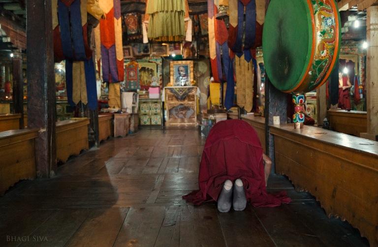 ladakh monastery, ladakh, thiksey monastery, ladakh scenery, landscapes ladakh, dalai lama, buddhist monks, himalayan ranges
